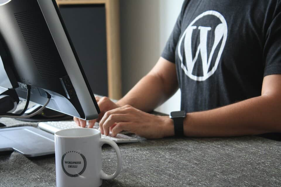 How to set up WordPress in a Headless Manner