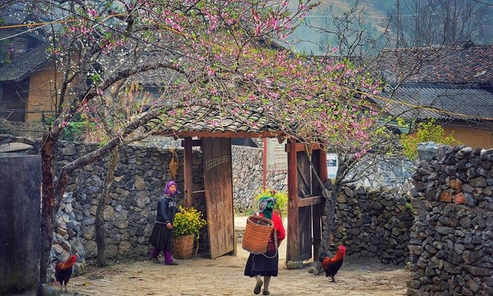 Explore 7 majestic, wild and beautiful destinations that 'captivating' Dong Van – Ha Giang Viet Nam