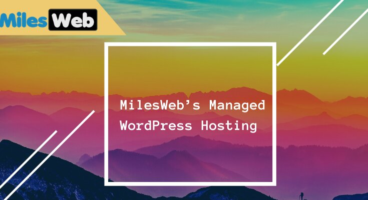 MilesWeb's Managed WordPress Hosting Review: Discovering the Reasons to Host with Them