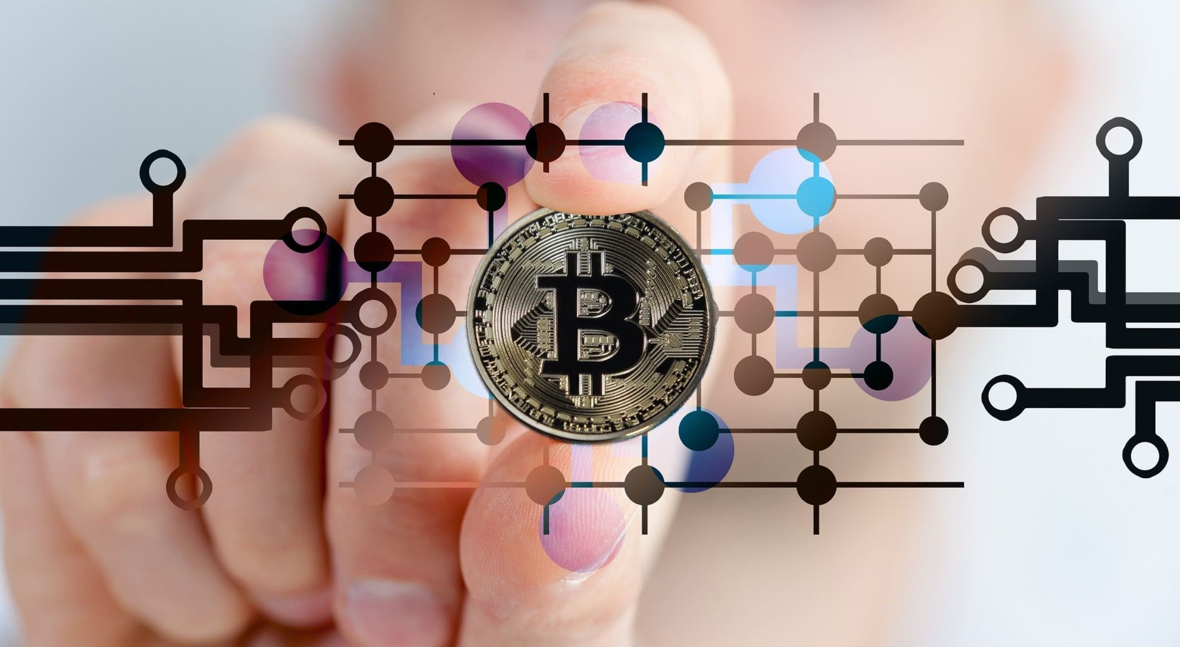 Everything About Bitcoin BTC Paper Wallet