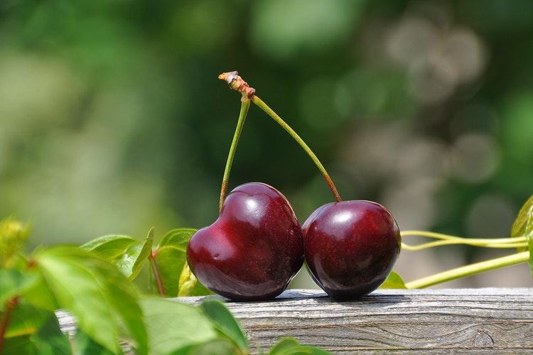 Cherry - The Best Food To Enhance Brain Memory