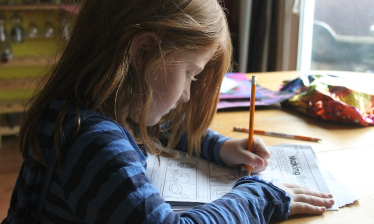 Parent Guide: 7 Homework Tips Your Child Should Know
