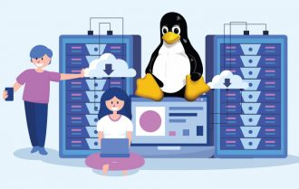 Everything You Should Know About Economy Linux Hosting With cPanel